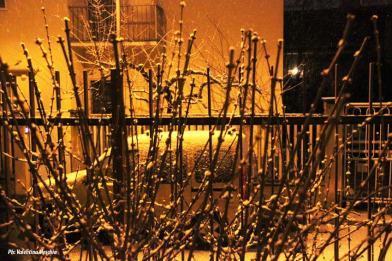 Ancora neve a Milano